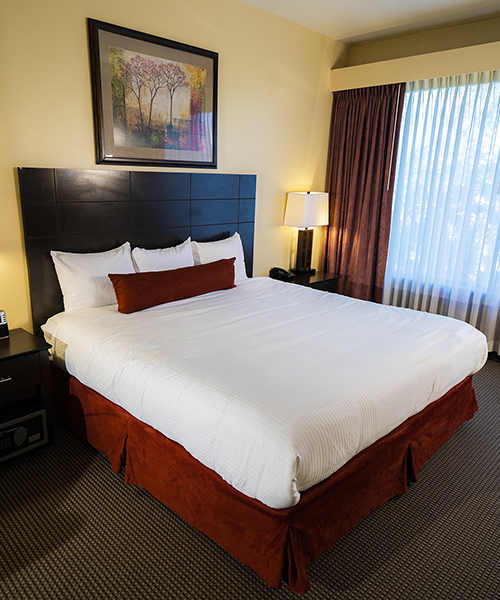 Large bed in Suite